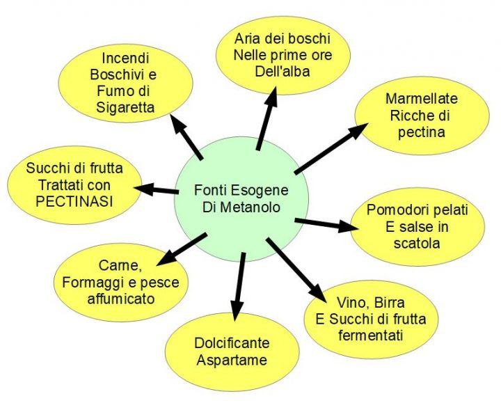 Fonti esogene di metanolo