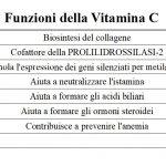 Le 7 Funzioni della Vitamina C