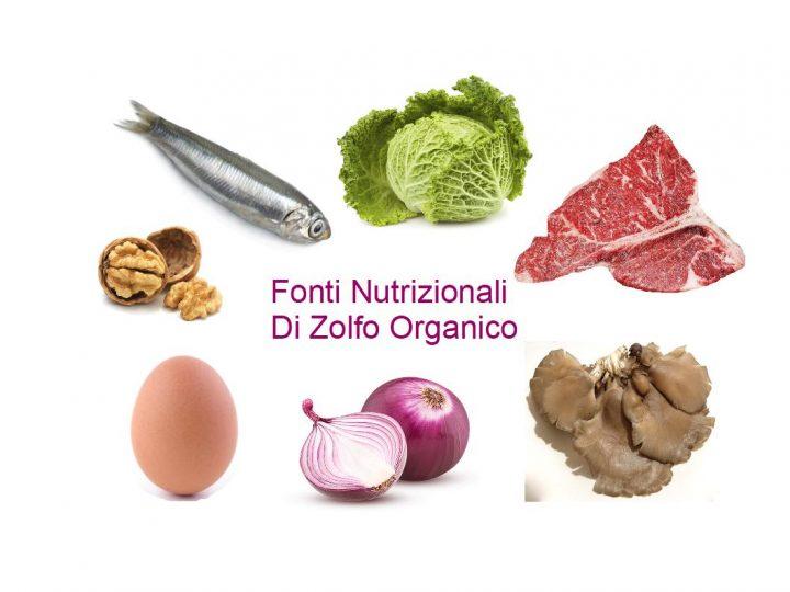 Lo zolfo organico nella dieta