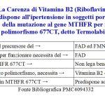 Ipertensione da carenza di Vitamina B2