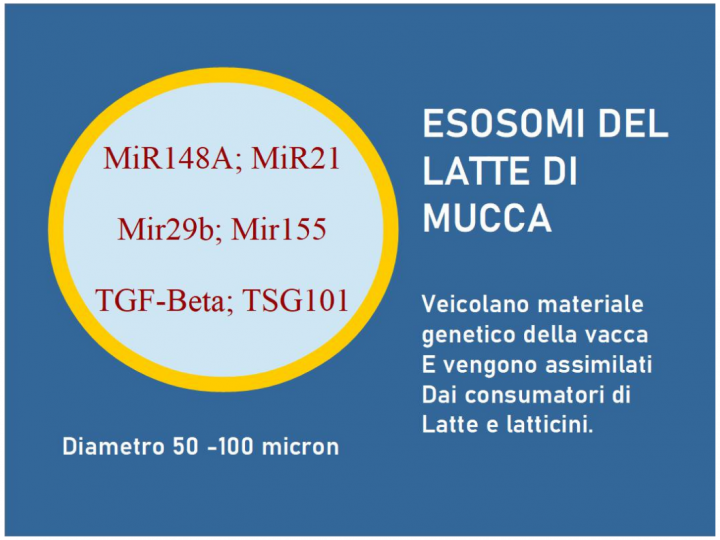 Esosomi del Latte Pastorizzato