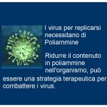 Virus e Poliammine