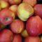 Frutta biologica: Perché è meglio?