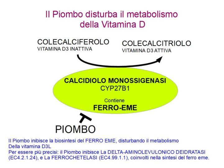 Il Piombo disturba la Vitamina D
