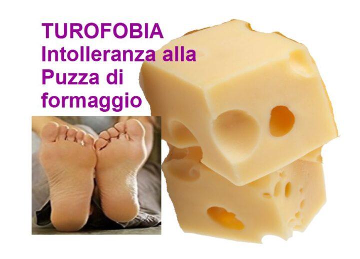 TUROFOBIA: Intolleranza all'Odore del Formaggio