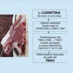 Carne Rossa e TMAO dannosa al cuore