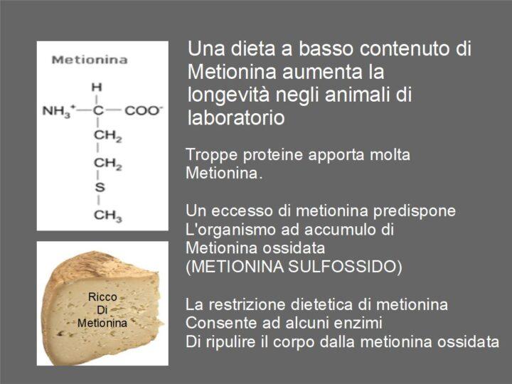 Ridurre la Metionina aumenta la longevità