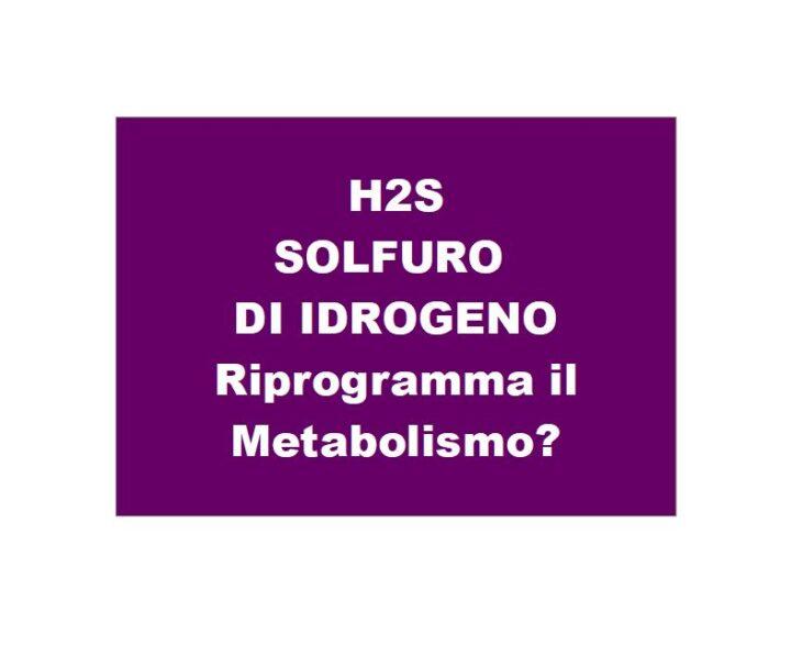 Il Solfuro di Idrogeno riprogramma il metabolismo cellulare