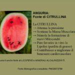 Anguria: Fonte di L-Citrullina