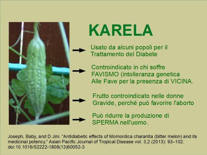 KARELA: Il melone Amaro contro il Diabete
