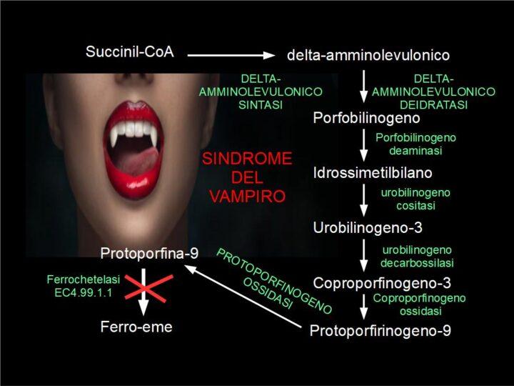 Vampiri e carenza di Ferrochetelasi