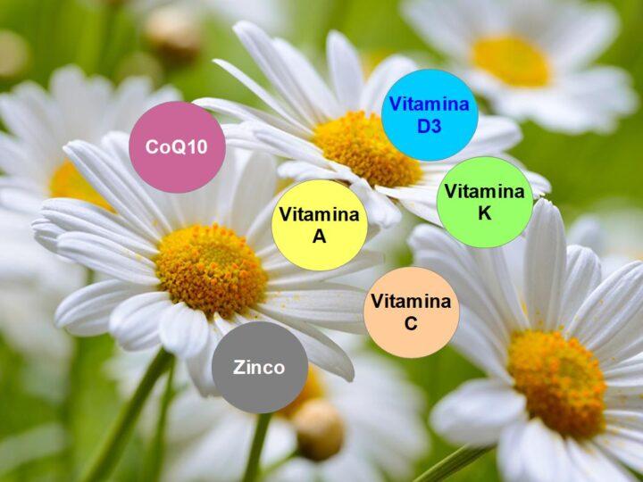 Vitamina C, D, E, K, CoQ10 e Zinco