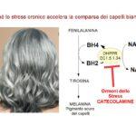 Stress e Capelli Bianchi