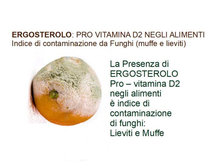 ERGOSTEROLO: La Pro - Vitamina D2 che può essere utilizzata come marker di contaminazione fungina negli alimenti