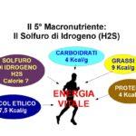 Il Quinto Macronutriente: Il Solfuro di idrogeno