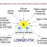 Il Solfuro di Idrogeno: Gas della Longevità
