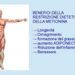 Benefici della Dieta povera di Metionina