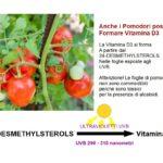 Le Piante producono vitamina D3?