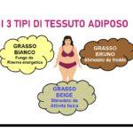Quanti tipi di tessuto adiposo abbiamo?